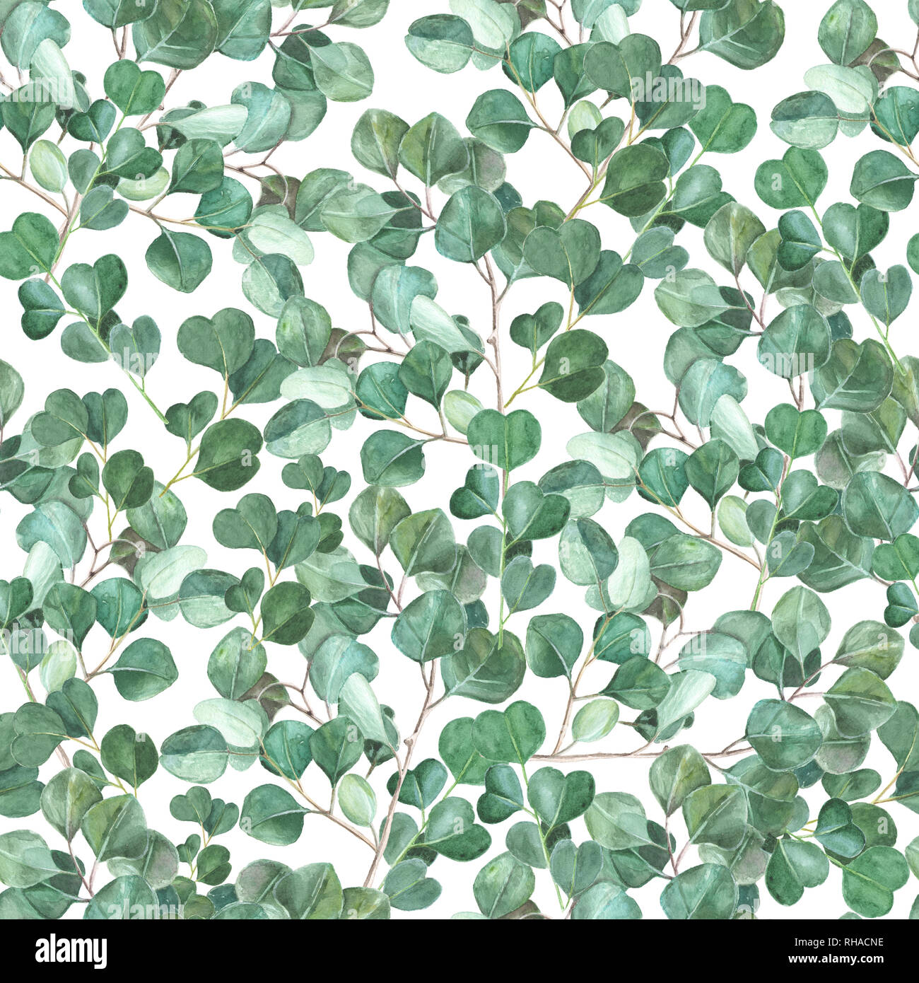 watercolor eucalyptus hand painted seamless pattern green foliage watercolor seamless background RHACNE