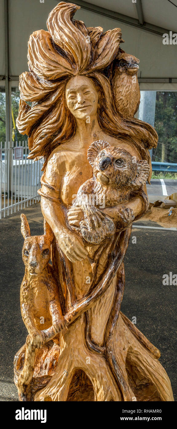 Carving on a tree at SkyHigh in Dandedong, Australia - Stock Image