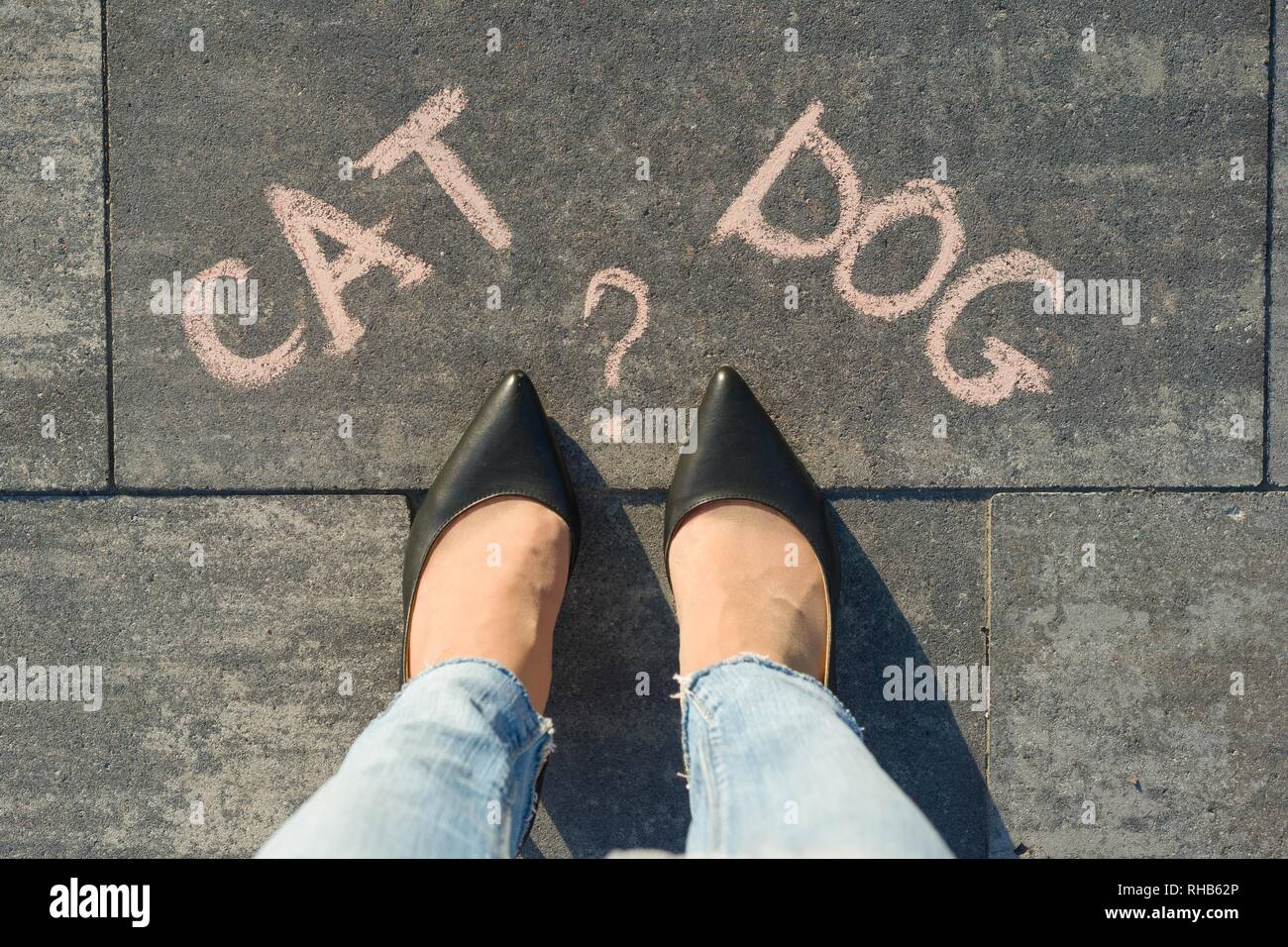 Woman before the choice cat or dog. View from above, female feet with text cat dog written on grey sidewalk - Stock Image