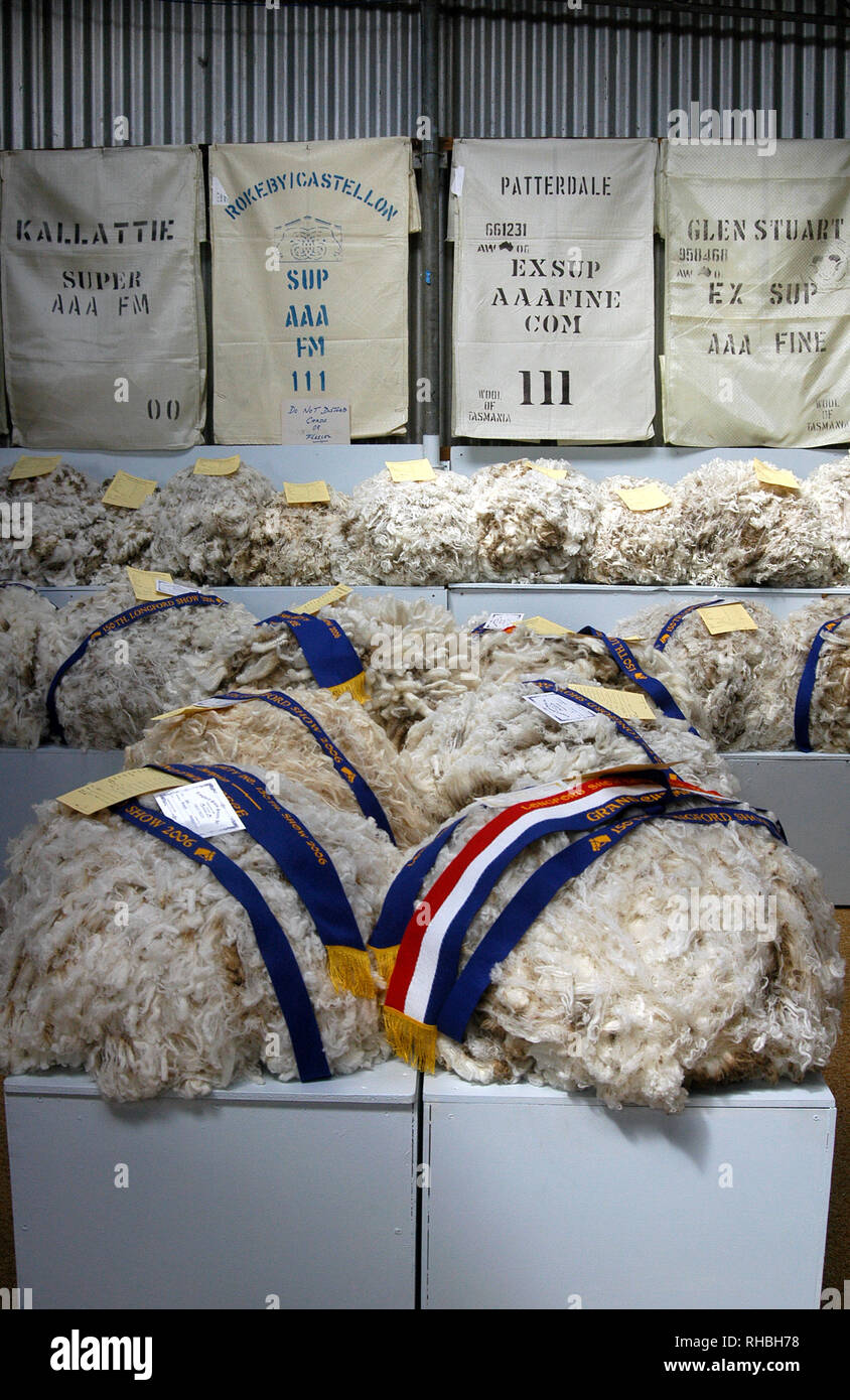 WOOL GRADING AND FLEECE COMPETITION AT THE LONGFORD ONE DAY SHOW, LONGFORD, TASMANIA, AUSTRALIA - Stock Image