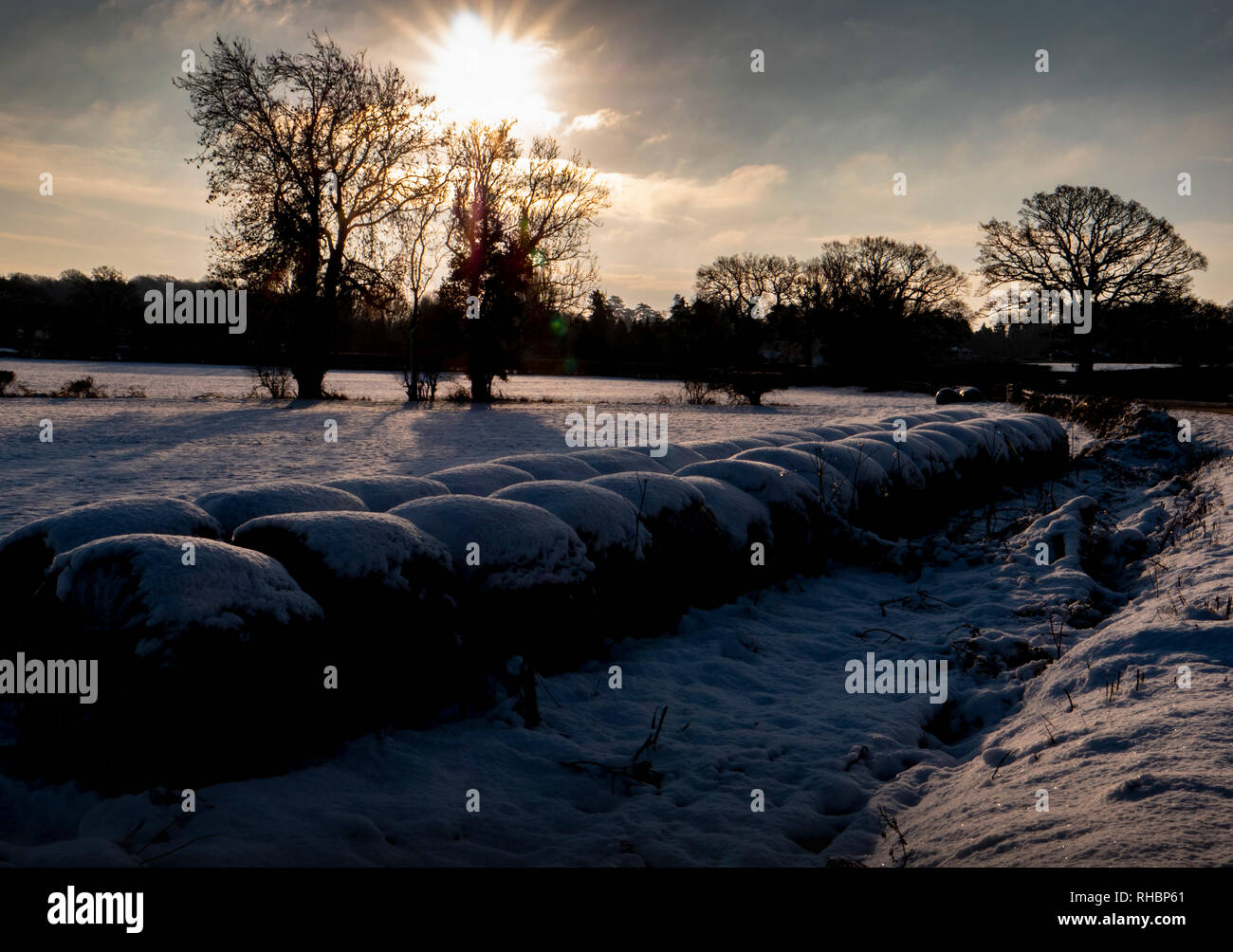 Snow covered fields in early morning sunlight Stock Photo