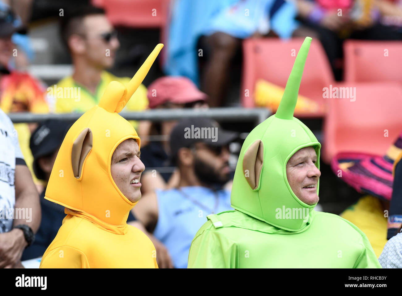 Spotless Stadium, Sydney, Australia. 2nd Feb, 2019. HSBC Sydney Rugby Sevens; fans in fancy dress enjoying the games Credit: Action Plus Sports/Alamy Live News Stock Photo