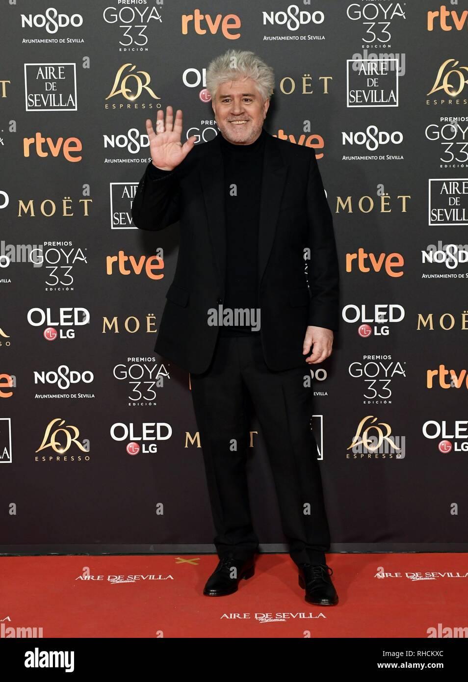 Sevilla, Spain  2nd Feb 2019  Director Pedro Almodovar at