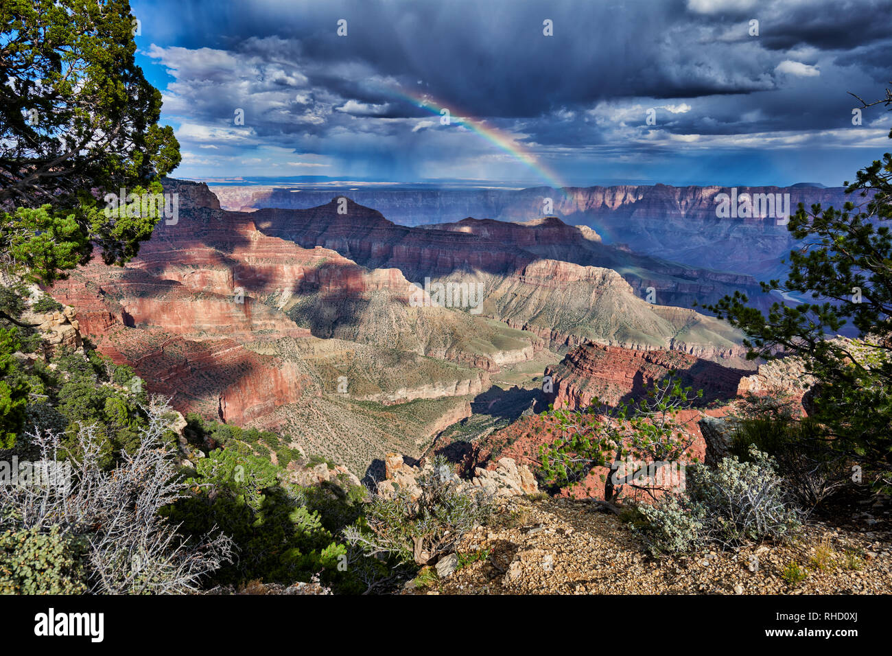 thunderstorm and rainbow over Grand Canyon, Cape Royal viewpoint, Arizona, USA - Stock Image