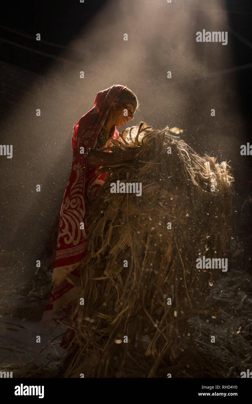 DHAKA, BANGLADESH - JANUARY 24 : Women working in dust environmentinside at jute processing mill near Dhaka, Bangladesh on January 24, 2019. Stock Photo