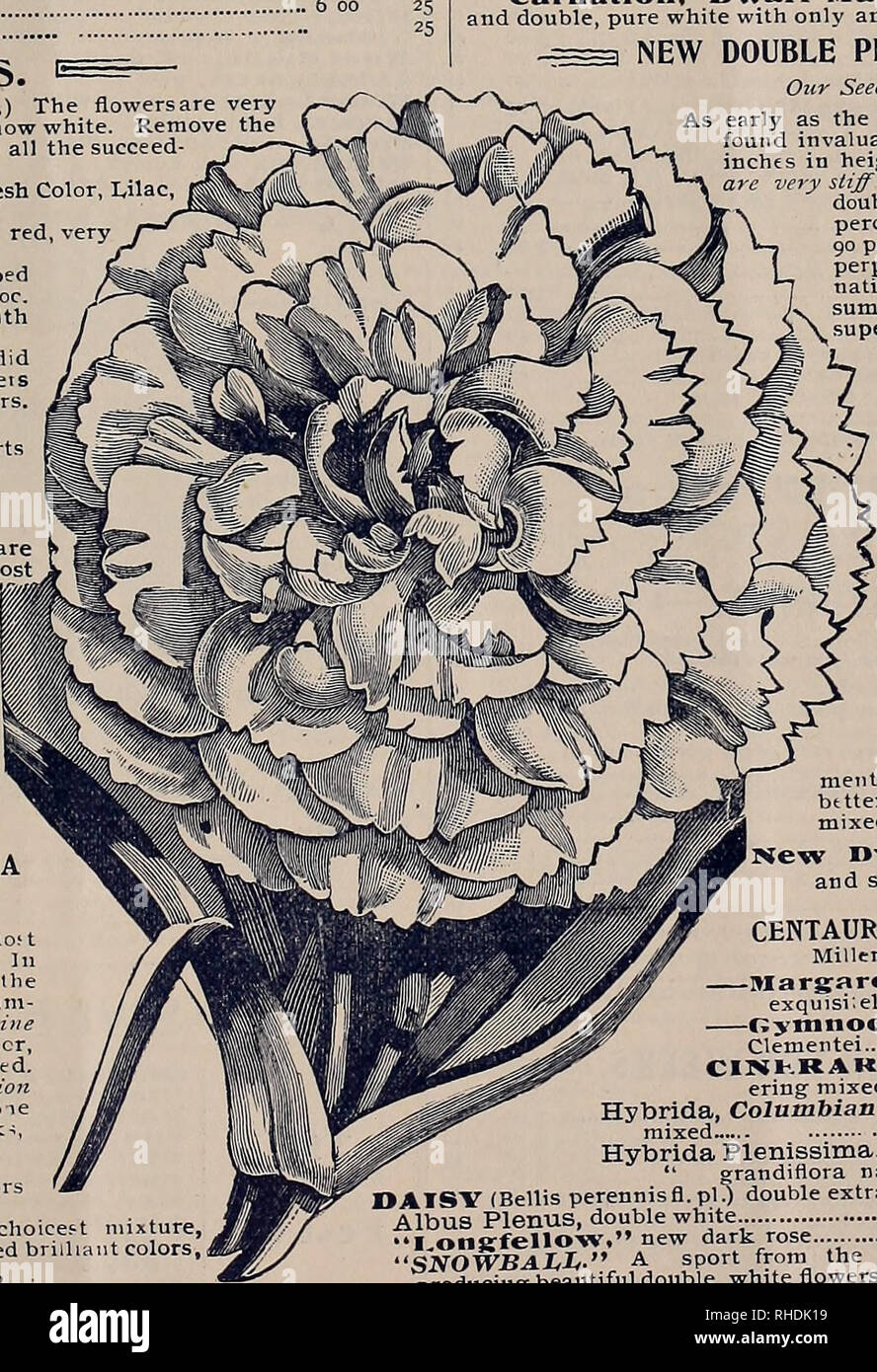 486666e2a Flowers Seeds Catalogs; Flowers Seedlings Catalogs; Gardening Equipment and  .