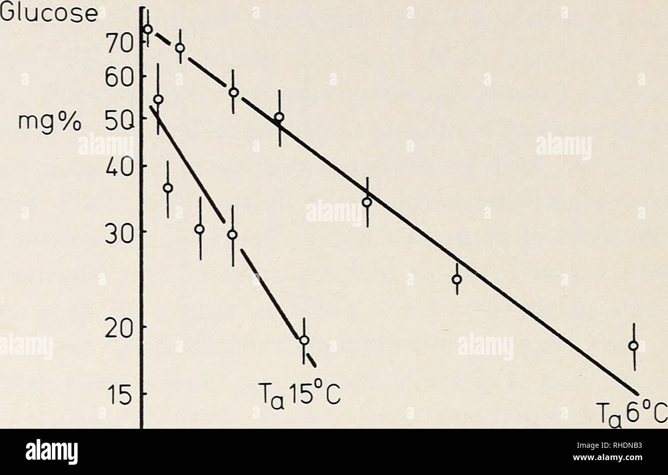 . Bonner zoologische Monographien. Zoology. 34 Plasma. i- hours 2 U 6 8 10 12 Fig. 22: Drop of plasma glucose level in the hibernating garden dormouse at different ambient (and body-) temperatures. Adapted from Ambid (1971). However, homeostasis of the blood sugar level may be difficult to main- tain during hibernation (Raths 1961). After all, in golden hamsters, survival time during helium-induced hypothermia is increased if one prevents the decrease of liver glycogen and blood glucose (Prewitt et al. 1972). Glucose can be absorbed from the intestine during hibernation (Musacchia and Westhoff - Stock Image