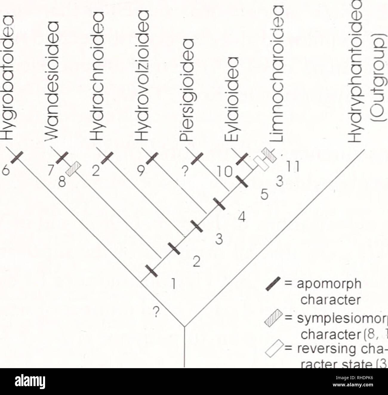 Bonner zoologische Monographien  Zoology  PANESAR  EVOLUTION