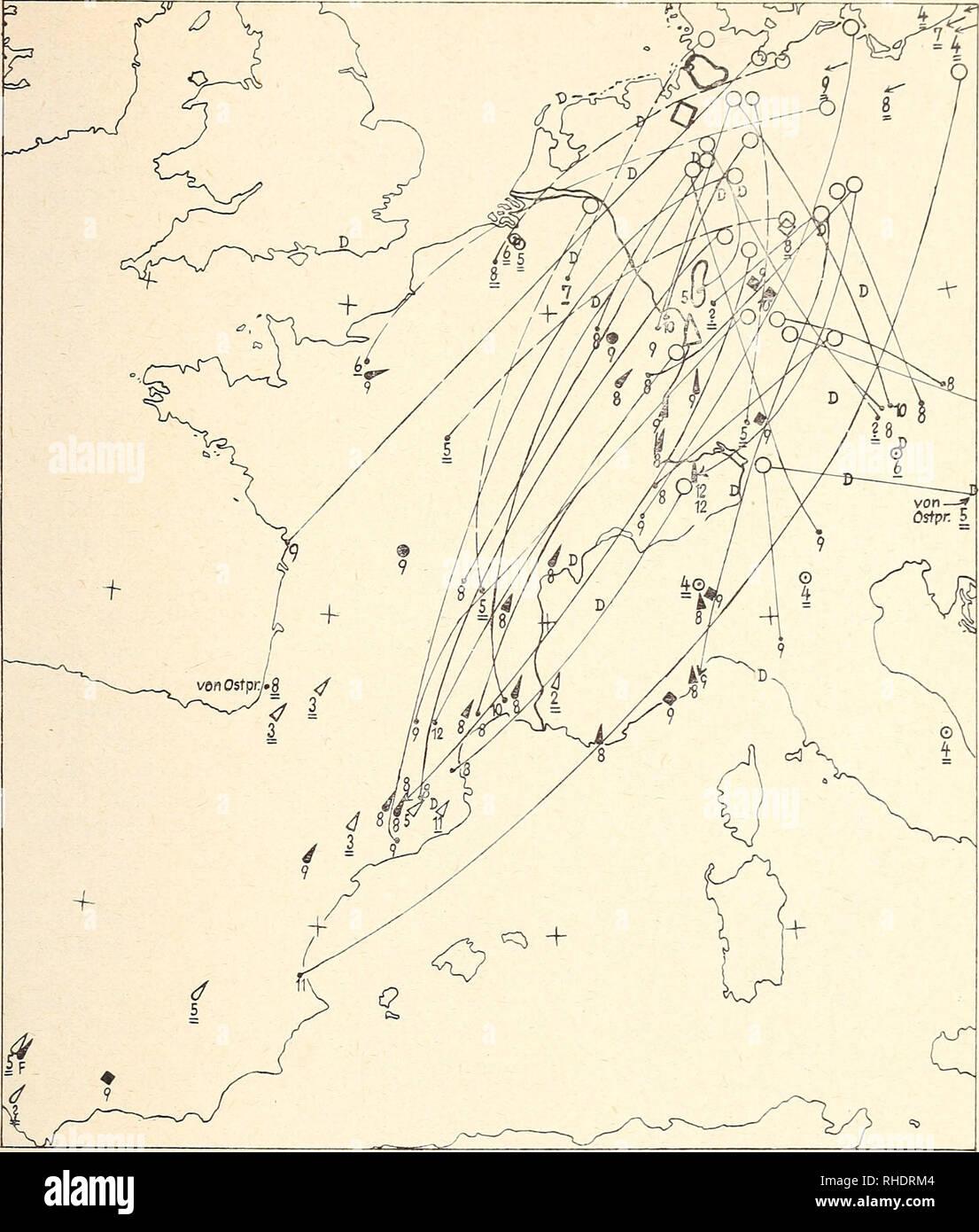Karte linien deutschland ZEIT ONLINE