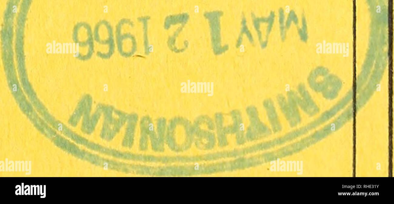 . Bonner zoologische Beiträge : Herausgeber: Zoologisches Forschungsinstitut und Museum Alexander Koenig, Bonn. Biology; Zoology. Sjo, sy 3 BONNER ZOOLOGISCHE BEITRÄGE ZOOLOGISCHES FORSCHUNGSINSTITUT MUSEUM ALEXANDER KOENIG, BONN PROF. DR. MARTIN EISENTRAUT UND DR. HEINRICH WOLF SCHRIFTLEITUNG : PROF. DR. GÜNTHER NIETHAMMER HERAUSGEBER: UND HEFT 3/4 16. JAHRGANG 1965 BONN 1965. SELBSTVERLAG Bonn. zool. Beitr Heft 3/4 16/1965 Ausgegeben am 15. März 1966. Please note that these images are extracted from scanned page images that may have been digitally enhanced for readability - coloration and a - Stock Image