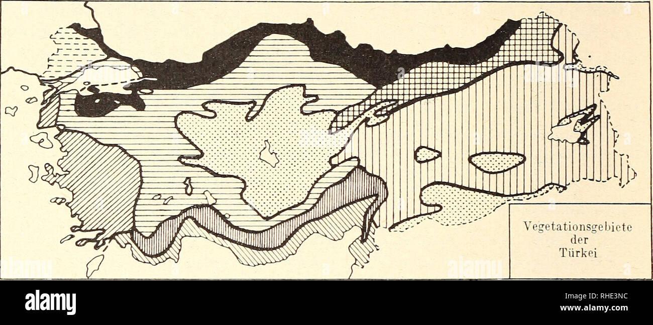 . Bonner zoologische Beiträge : Herausgeber: Zoologisches Forschungsinstitut und Museum Alexander Koenig, Bonn. Biology; Zoology. H. Kumerloeve Bonn, zool. Beilr.. mitteleuropäisch-kolchisches Buchenwaldgebiet (mit Tanne) mediterran-ägäisches Gebiet mediterran-südanatolisches Gebiet südanatolische Zedern-Tannen Gebirgswälder mit Amanus-Gebirge submediterrane Schwarzkiefernwälder boreale Fichten-Waldföhrenwälder ostanatolische Eichen-Baumwacholderwälder vermutliches Waldsteppengebiet Thraziens zentralanatolisches, syrisch-obermesopotamisches und ostanatolisches Steppengebiet Abb. 2: Floristisch - Stock Image