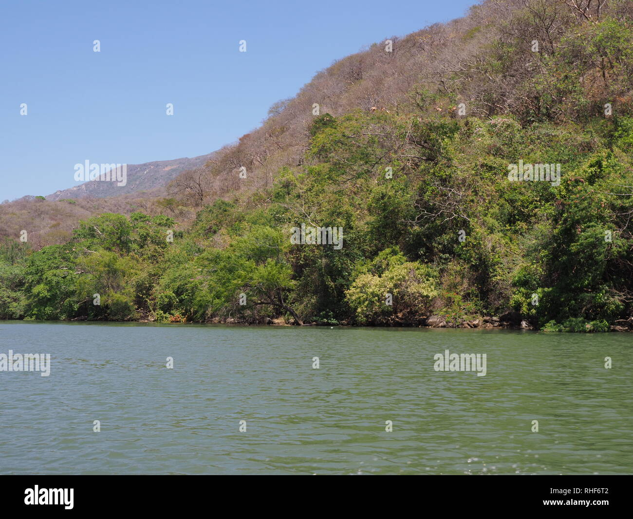 Tropical slope of Sumidero canyon at Grijalva river landscape in Chiapas state in Mexico - Stock Image