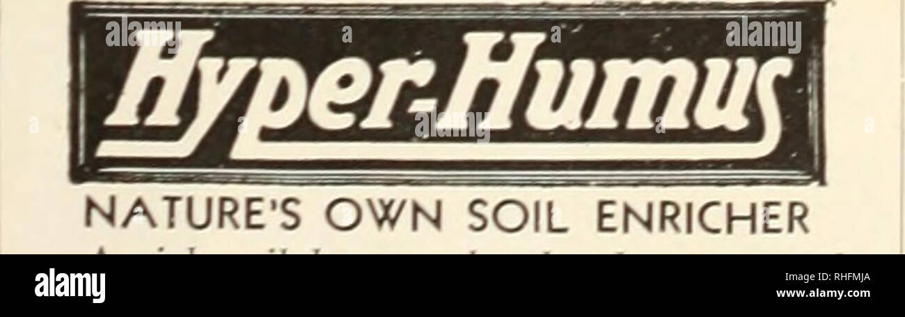 Bolgiano's bulbs and plants for fall 1954 planting  Nurseries