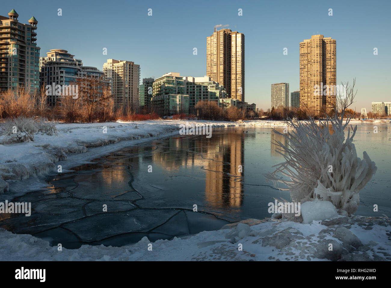 Panoramic Canadian winter landscape near Toronto, beautiful frozen Ontario lake at sunset. Scenery with winter trees, water and blue sky. Stock Photo