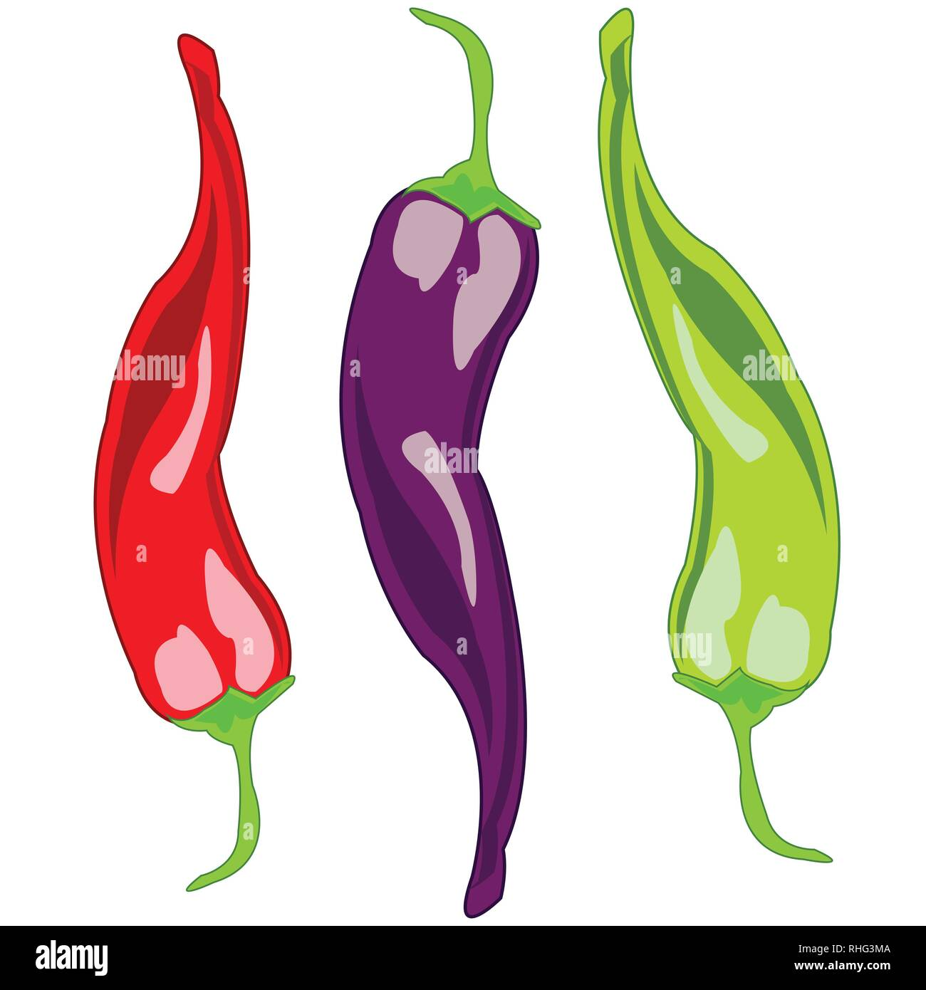 Sharp pepper chile on white background is insulated - Stock Vector