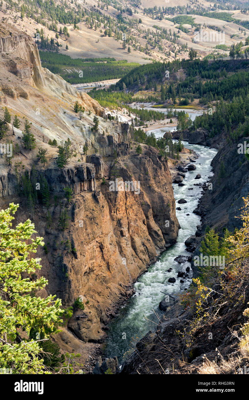 WY03107-00...WYOMING - The Yellowstone River descending past sheer basaltic cliffs in the Canyon of the Yellowstone, Yellowstone National Park. - Stock Image