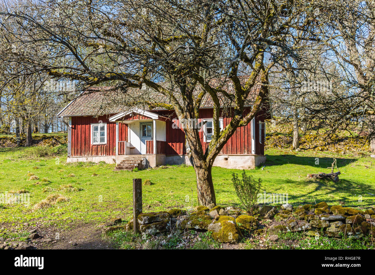 Old abandoned red cottage with garden in spring - Stock Image