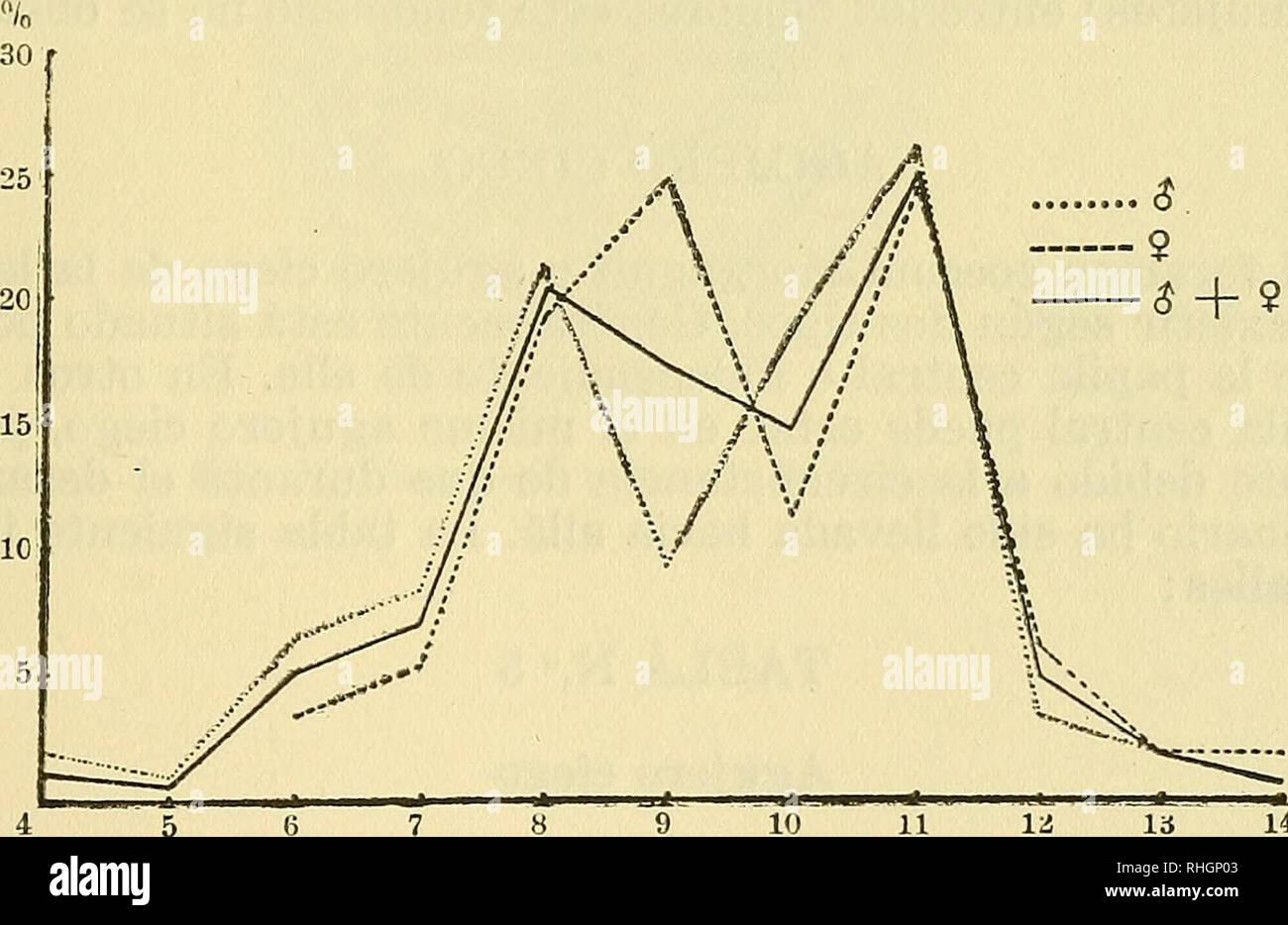 . Boletin de la Sociedad de Biología de Concepción. Sociedad de Biología de Concepción; Biology; Biology. TABLA N.° 3 Papilas caliciformes Número Hombres Mujeres Total ipilas n = 105 n = 112 n = 217 4 2 = 1,9% 2 = 0,9% ^x 5 1 .= 1,0% 1 = 0,5% tJ 6 7 = 6,6% 4 = 3,6% 11 = 5,1% 7 9 = 8,5% 6 = 5,4% 15 = 6,9% 8 22 t= 21,6% 22 = 19,5% 44 = 20,7% 9 10 = 9,4% 28 == 25,0% 38 = 17,4% 10 20 = 19,0% 13 = 11,6% 33 = 15,1% 11 28 = 26.4% 28 = 25,0% 56 = 25,6% 12 4 ^ 3,7% 7 = 6,3% 11 = 5,1% 13 2 = 1,9% 2 = 1,8% 4 = 1,8% 14 2 = 1,8% 2 = 0,9% Los polígonos de frecuencia (véase fig. N.° 4) son bastante irregular - Stock Image