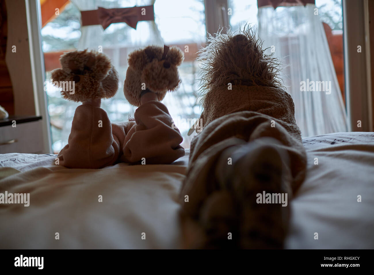 silhouette of brother and sister siblings looking outside window - Stock Image
