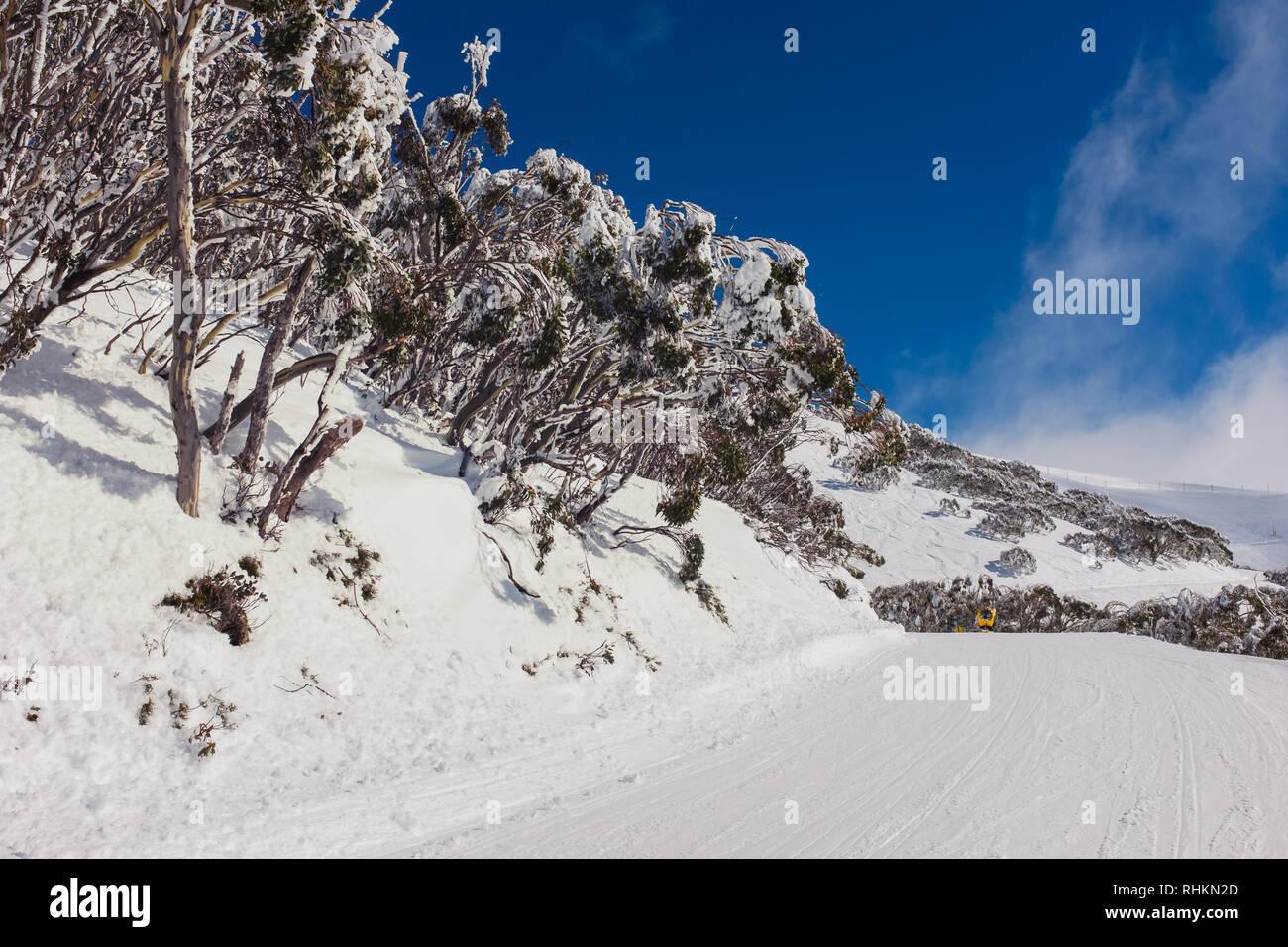 empty ski run - Stock Image