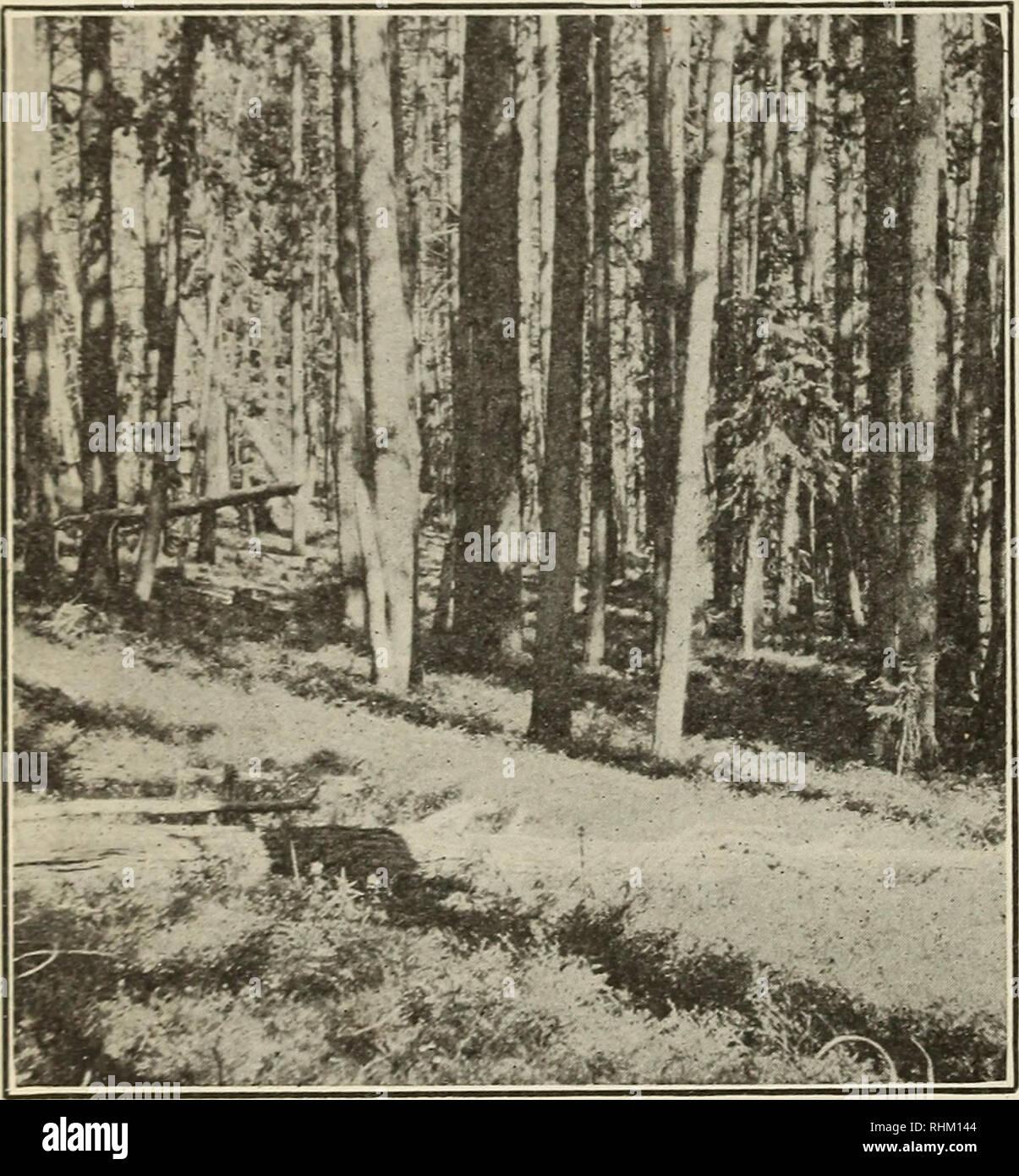 A biological survey of Colorado  Natural history Colorado
