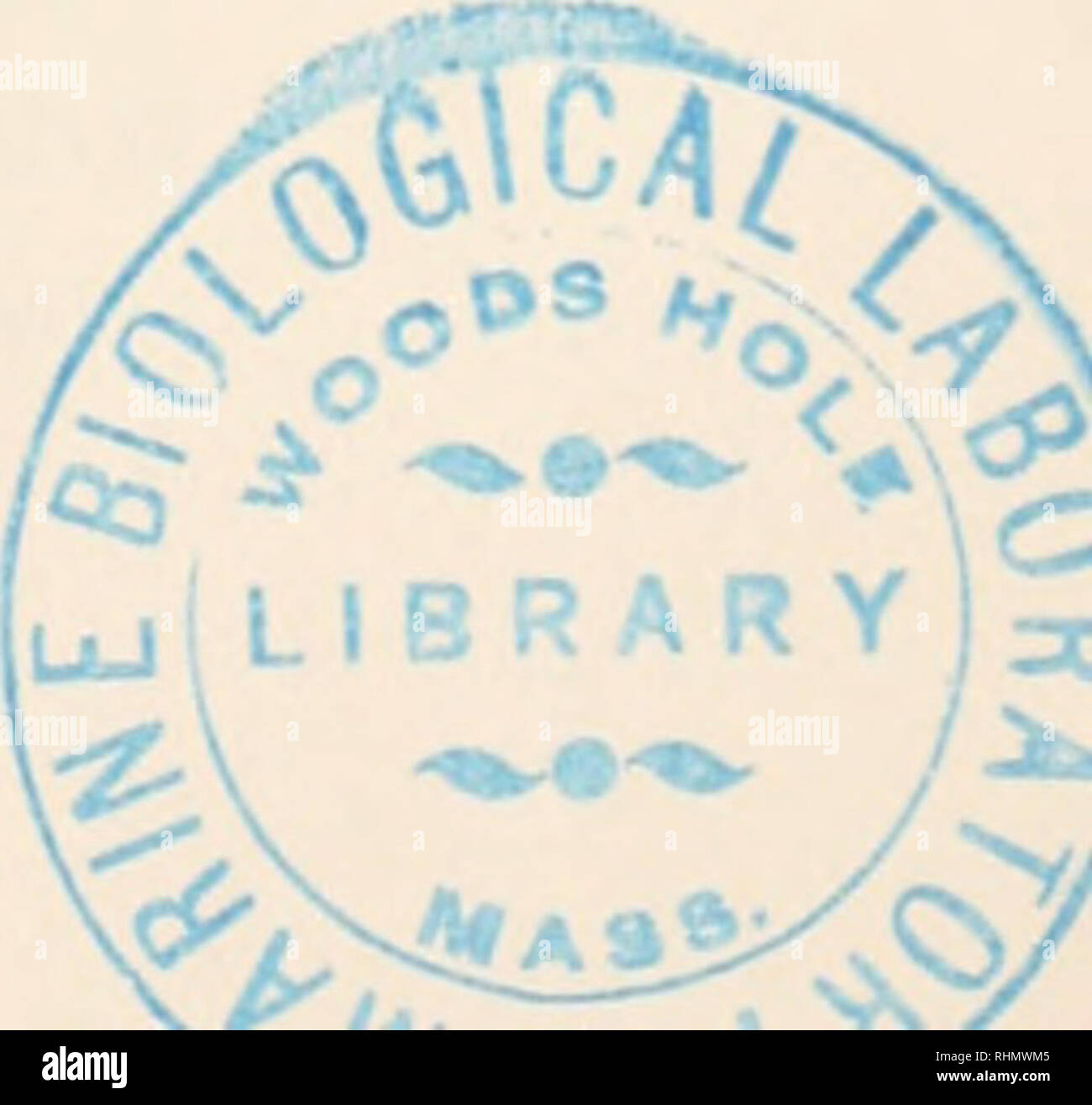 . The Biological bulletin. Biology; Zoology; Biology; Marine Biology. REPORT OF THE DIRECTOR. 49 FRY, DK. HENRY J., Washington Square College, New York City, N. Y. GAGE, PROF. S. H., Cornell University, Ithaca, New York. CARREY, PROF. W. E., Vanderbilt University Medical School, Nashville, Tennessee. GATES, DR. F. L., Rockefeller Institute, New York City, N. Y. GATES, PROF. R. RUGGLES, University of London, London, Eng- land. GEISER, DR. S. W., Southern Methodist University, Dallas, Texas. GLASER, PROF. O. C, Amherst College, Amherst, Massachusetts. GLASER, PROF. R. W., Rockefeller Institute f - Stock Image