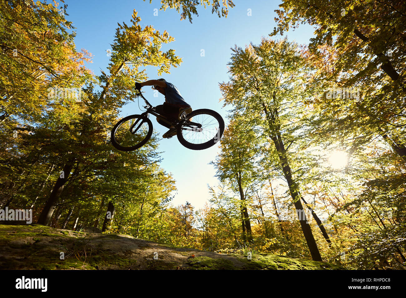 Low angle view of sportsman cyclist jumping on trial bicycle, professional rider making acrobatic trick on big boulder in the forest on summer sunny day. Concept of extreme sport active lifestyle Stock Photo