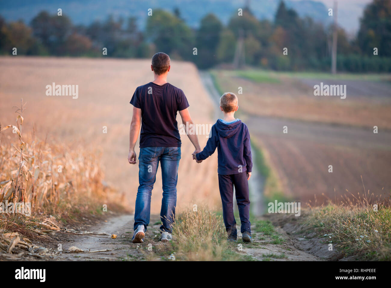 Back view of young father and son walking together holding hands by grassy field on blurred foggy green trees and blue sky background. Active lifestyl - Stock Image