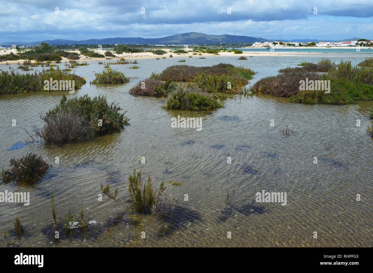 Salt marshes in Armona island, part of the Ria Formosa Natural Park in the Algarve region of southwestern Portugal Stock Photo