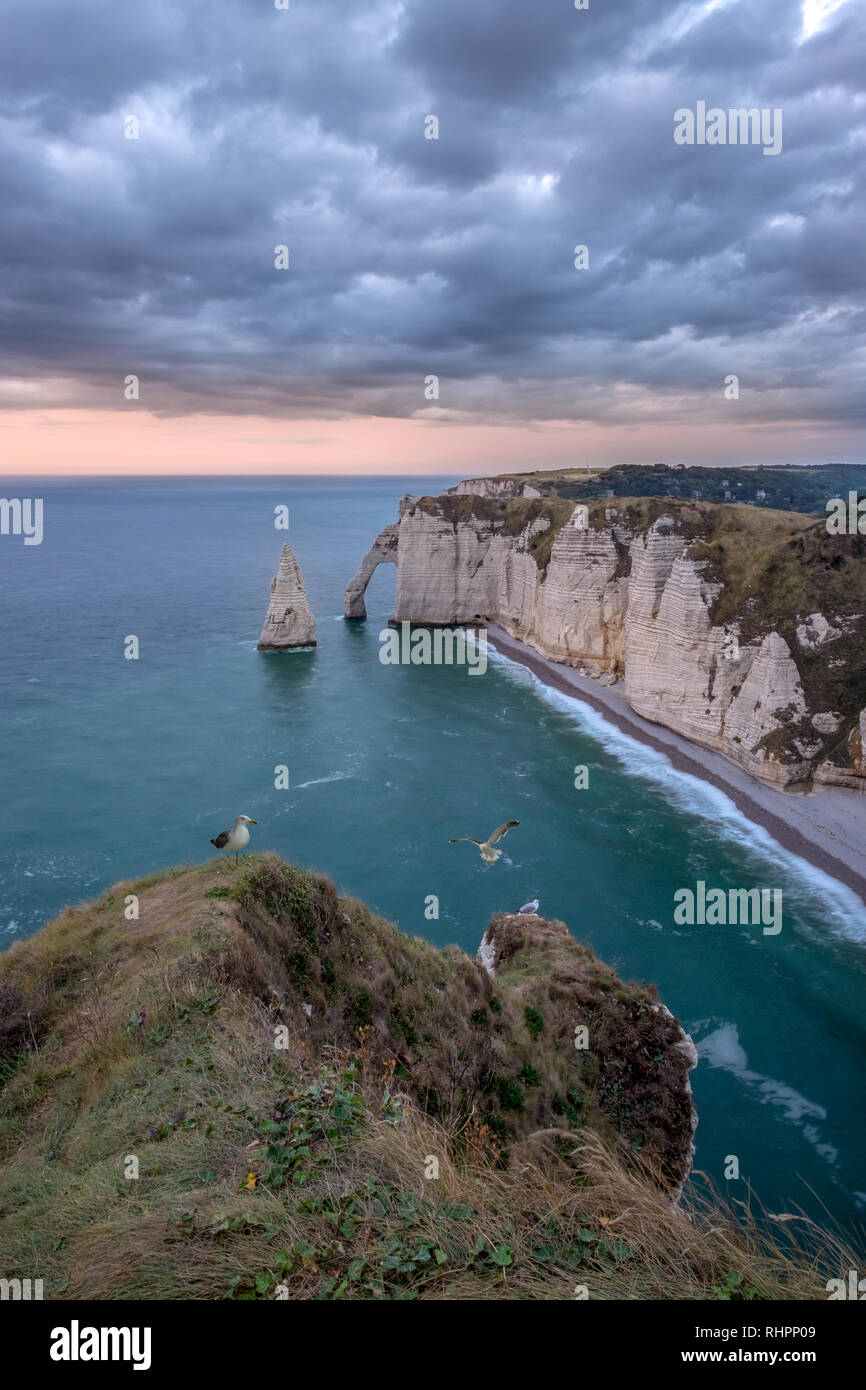 Cliffs of Etretat at sunset with seagulls in Normandy, France - Stock Image
