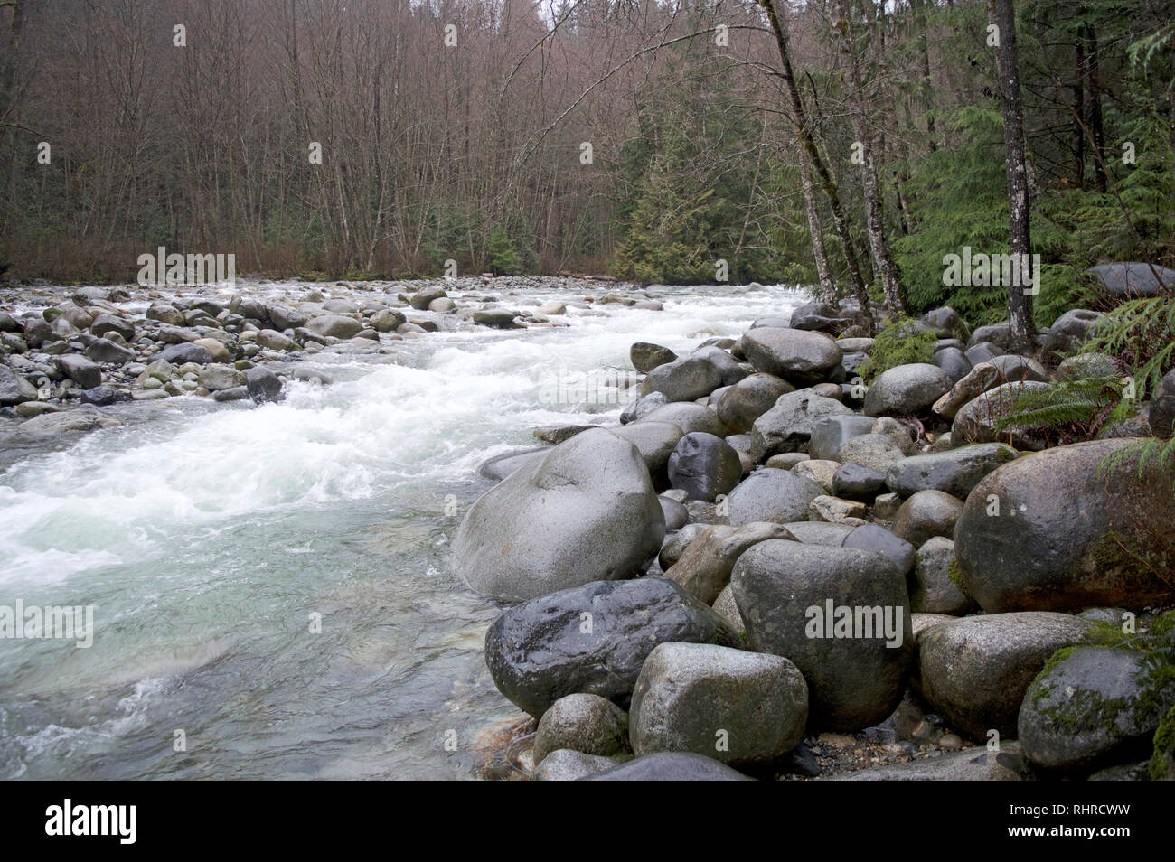 A river bend in British Columbia, Canada during a spring thaw. Lynn River Stock Photo