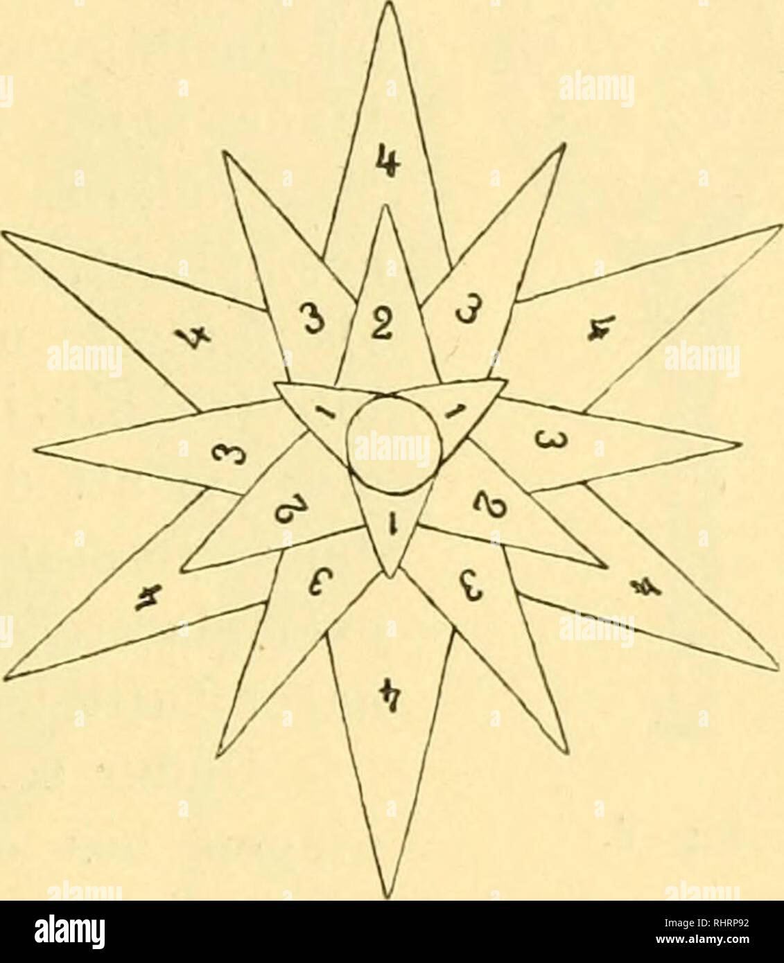 3ef161cc0a10 . Bihang till Kongl. Svenska vetenskaps-akademiens handlingar. Science;  Botany. Fis. 7. Fiv 8.
