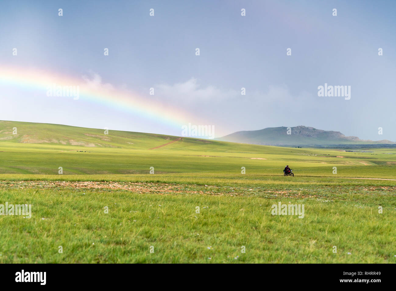 Man riding his motorbike and rainbow over the green Mongolian steppe. Ovorkhangai province, Mongolia. - Stock Image