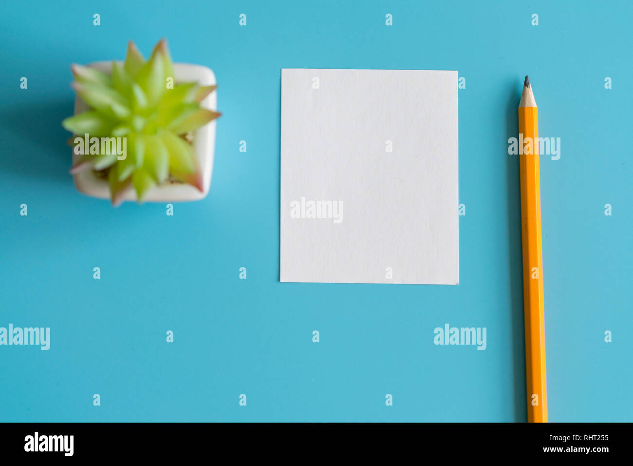 Cactus Draw Stock Photos Cactus Draw Stock Images Page 2 Alamy