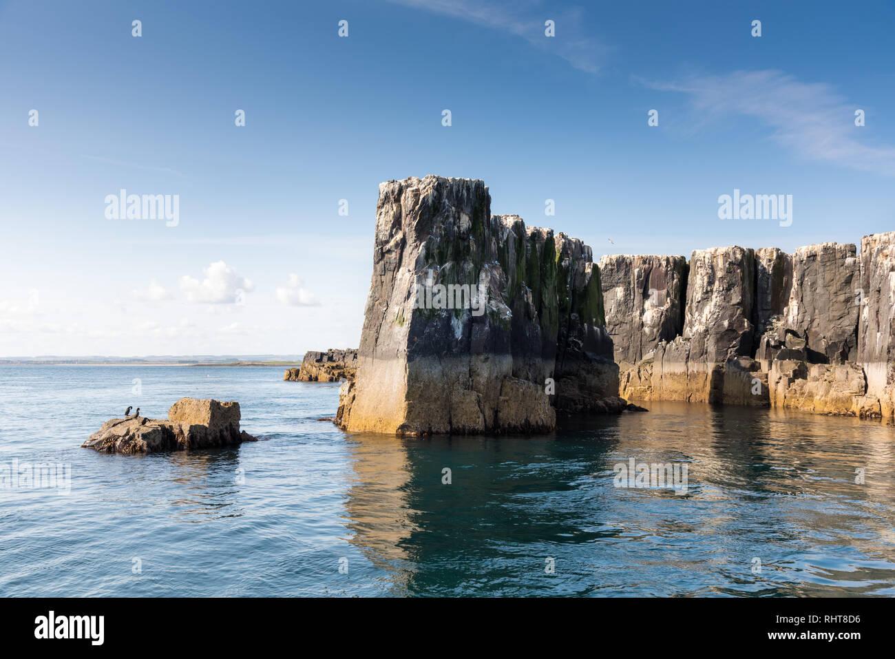 Staple Island, Farne Islands, Northumberland, UK - Stock Image