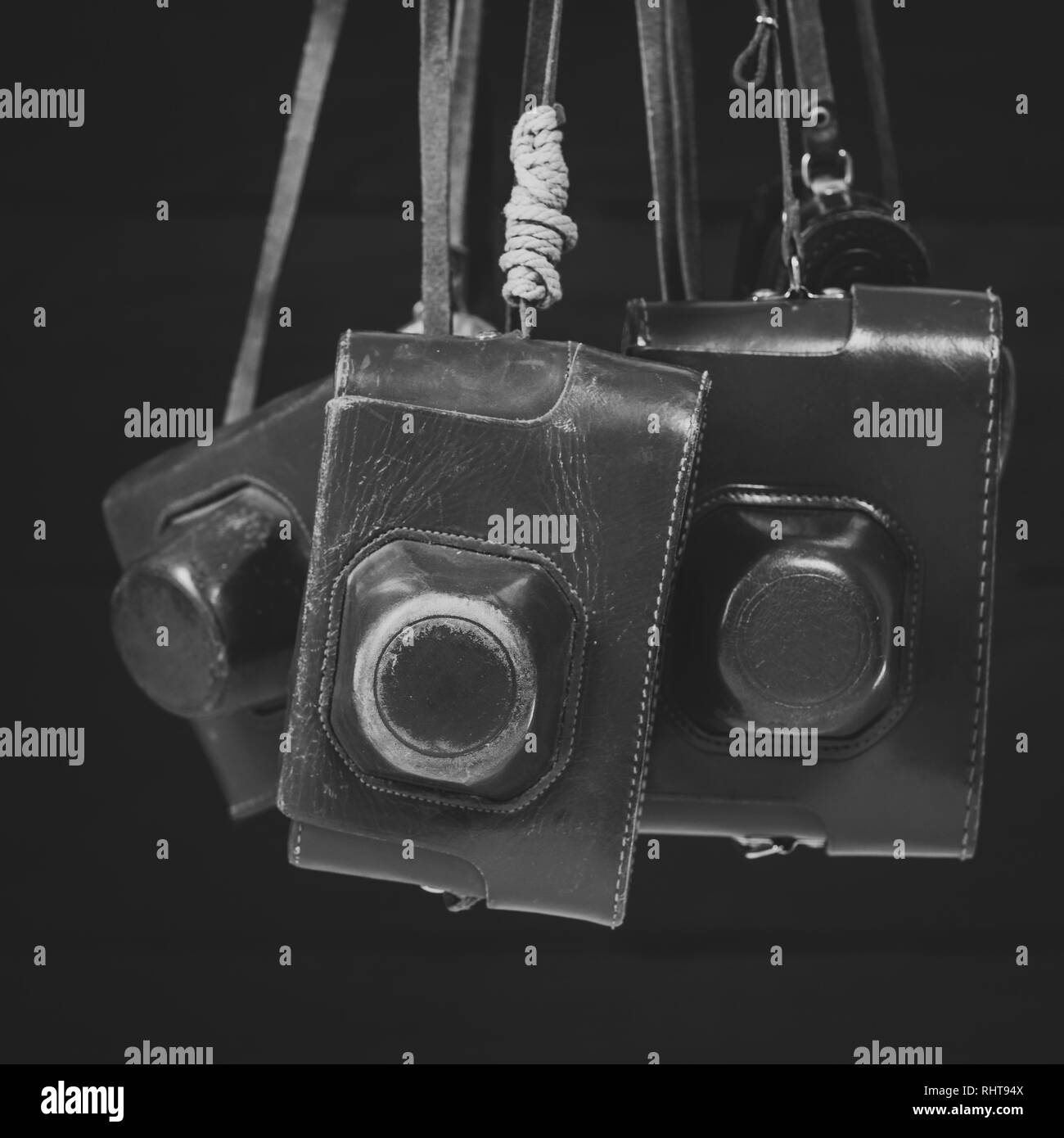 Retro cameras in leather covers, monochrome and matte effect. Collecting of antiques, auction - Stock Image
