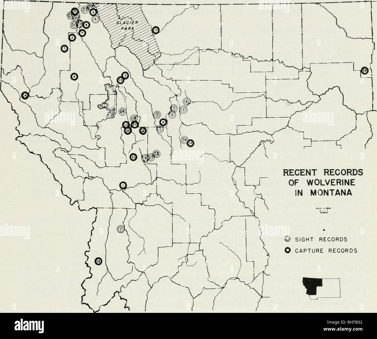 Map Of Montana State Stock Photos & Map Of Montana State Stock ...
