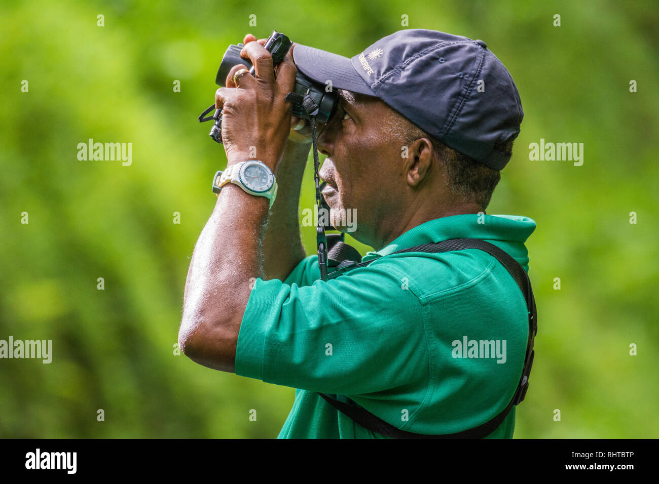Birding and nature tour guide Newton George at Tobago Main Ridge Forest Reserve, a UNESCO World Heritage Site; Trinidad and Tobago. - Stock Image