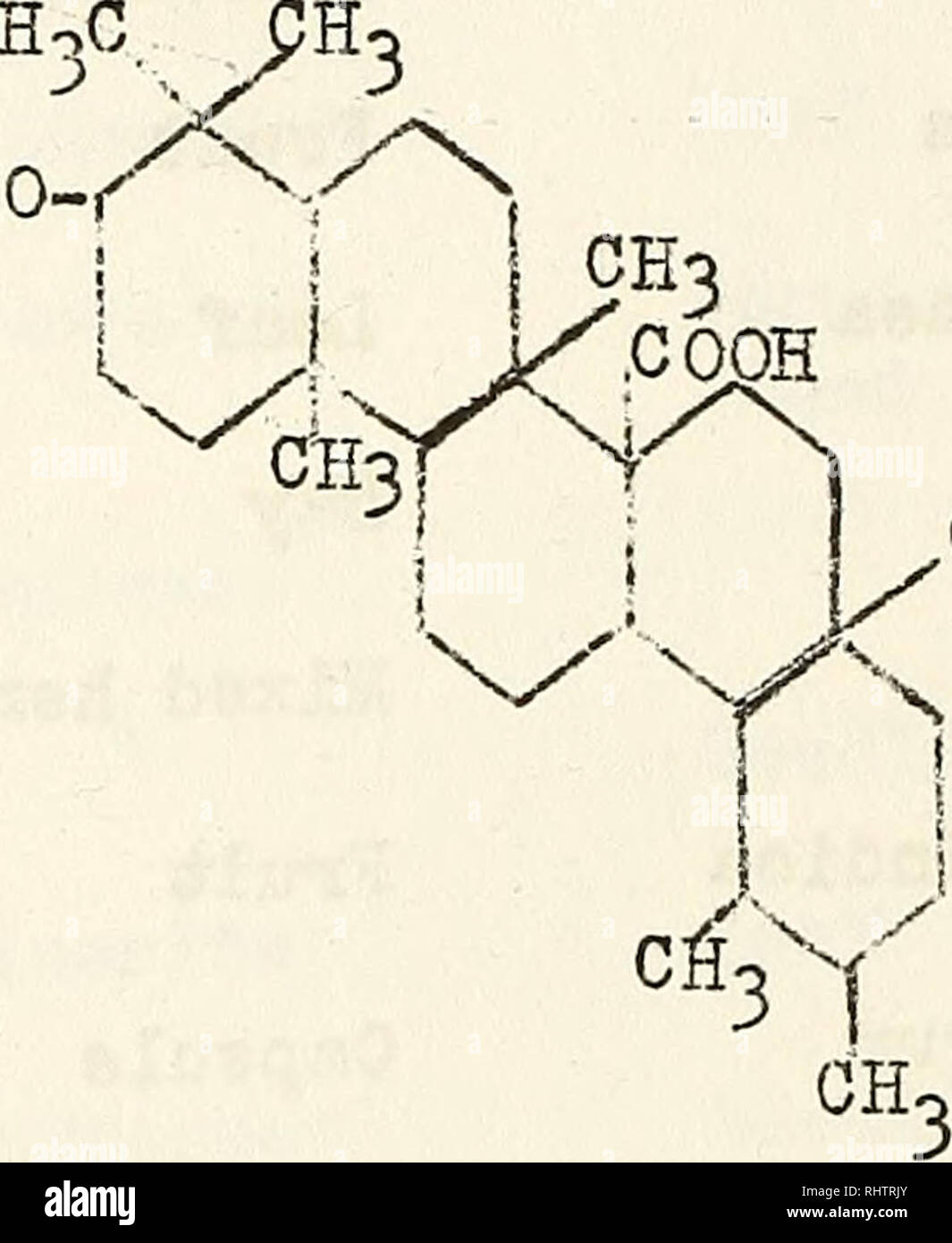 Bibliography Of Organic Acids In Higher Plants