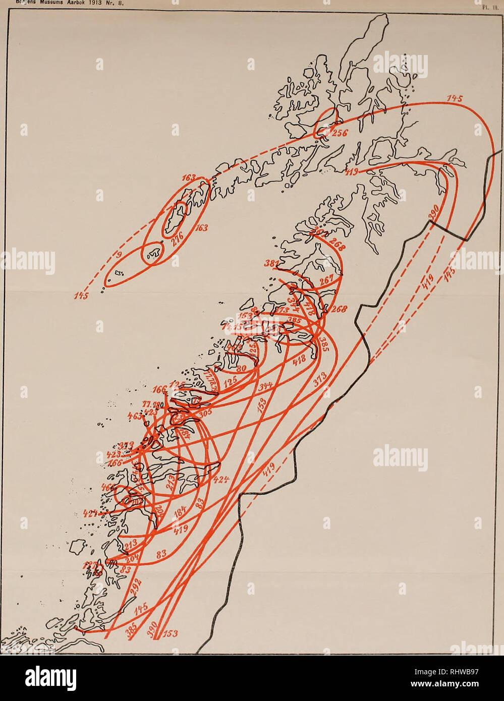 Forskjellige Bergens Museums aarbok. Bergons Museums. Carl Fred. Kolderup: Kart GP-63