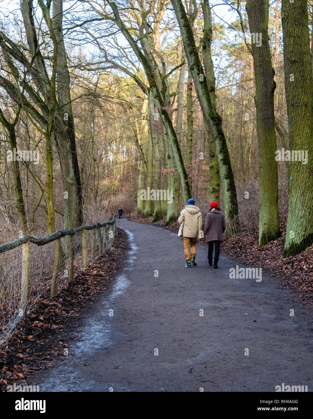 Krumme Lanke, Berlin, Germany. 4th February 2019. Berliners brave the cold weather to walk in the Grunewald forest and admire the picturesque frozen Krumme Lanke lake. Credit. Eden Breitz/Alamy Live News - Stock Image