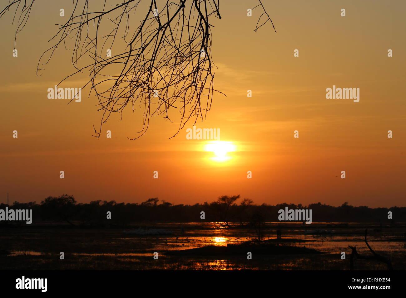 Reflection of Sun/Sunset In Bharatpur Bird Sanctuary/Keoladeo National Park - Stock Image