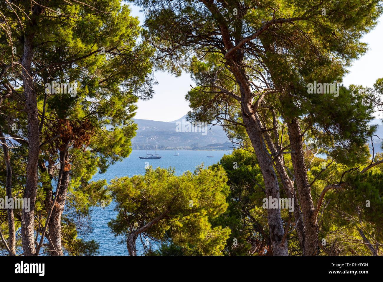 view through trees on Nvarino bay and Pylos port, Messenia - Stock Image
