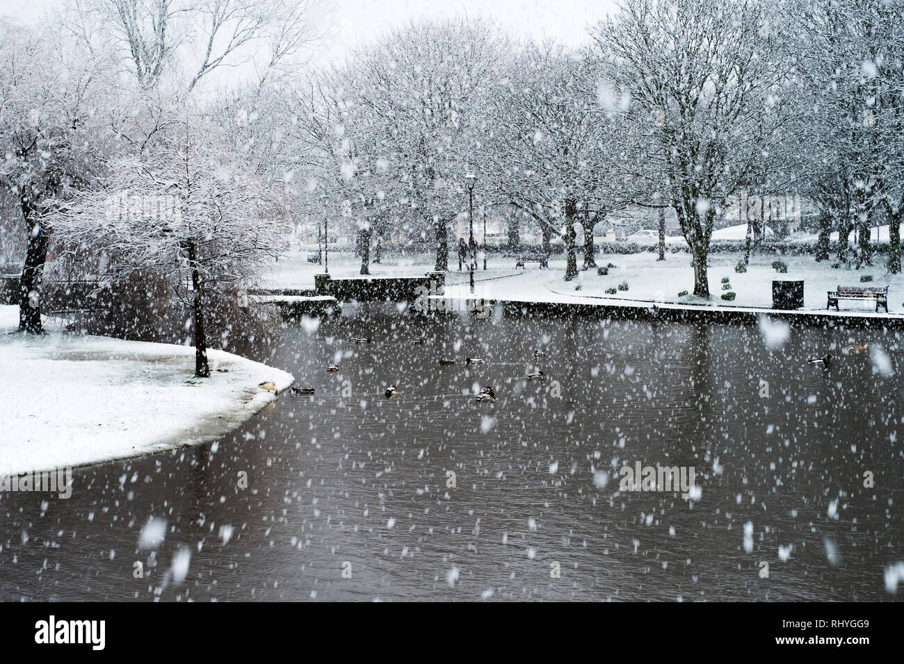 Heavy snowfall in Trenance Park in Newquay in Cornwall. - Stock Image