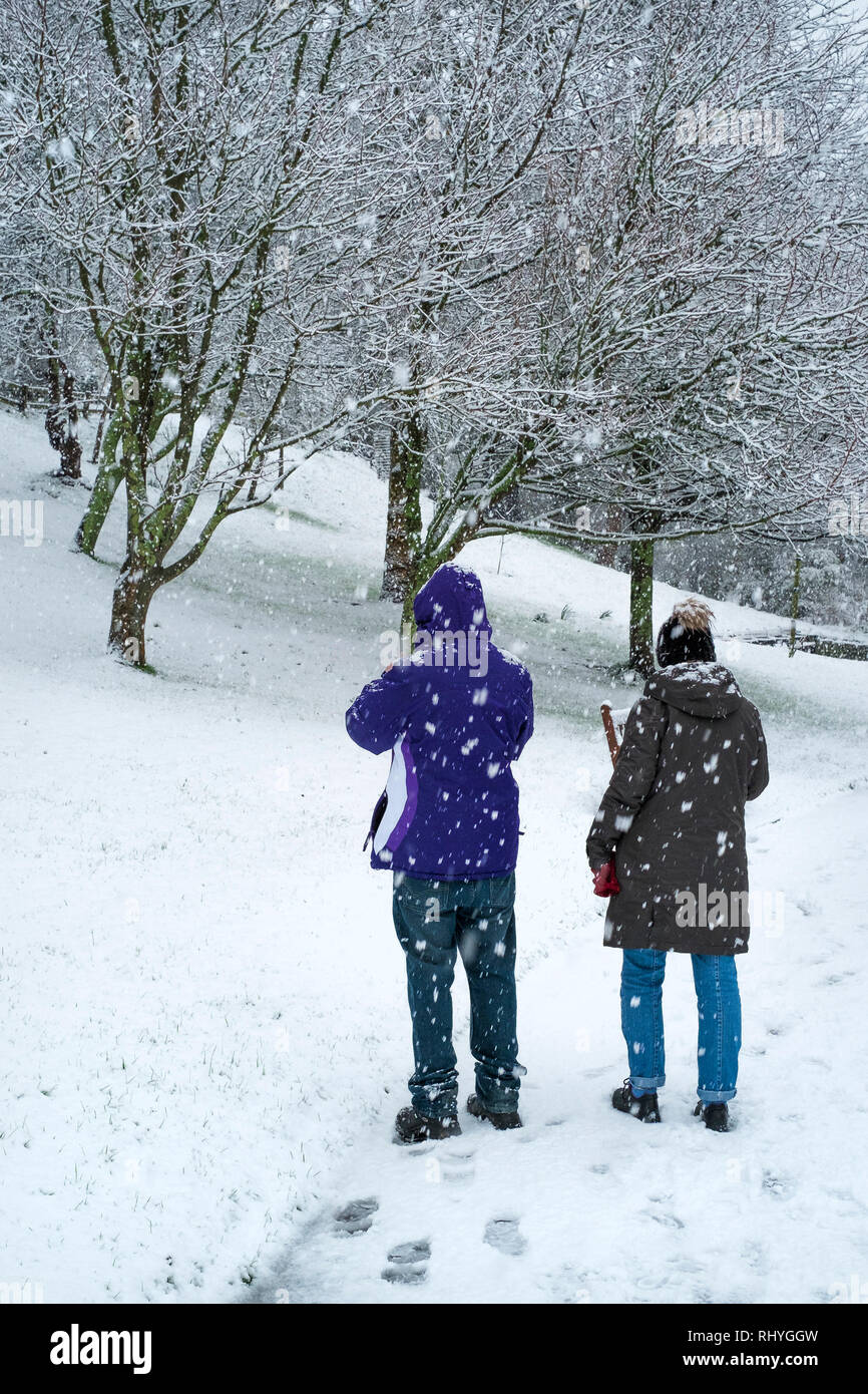 People enjoying the heavy snowfall in Trenance Park in Newquay in Cornwall. - Stock Image