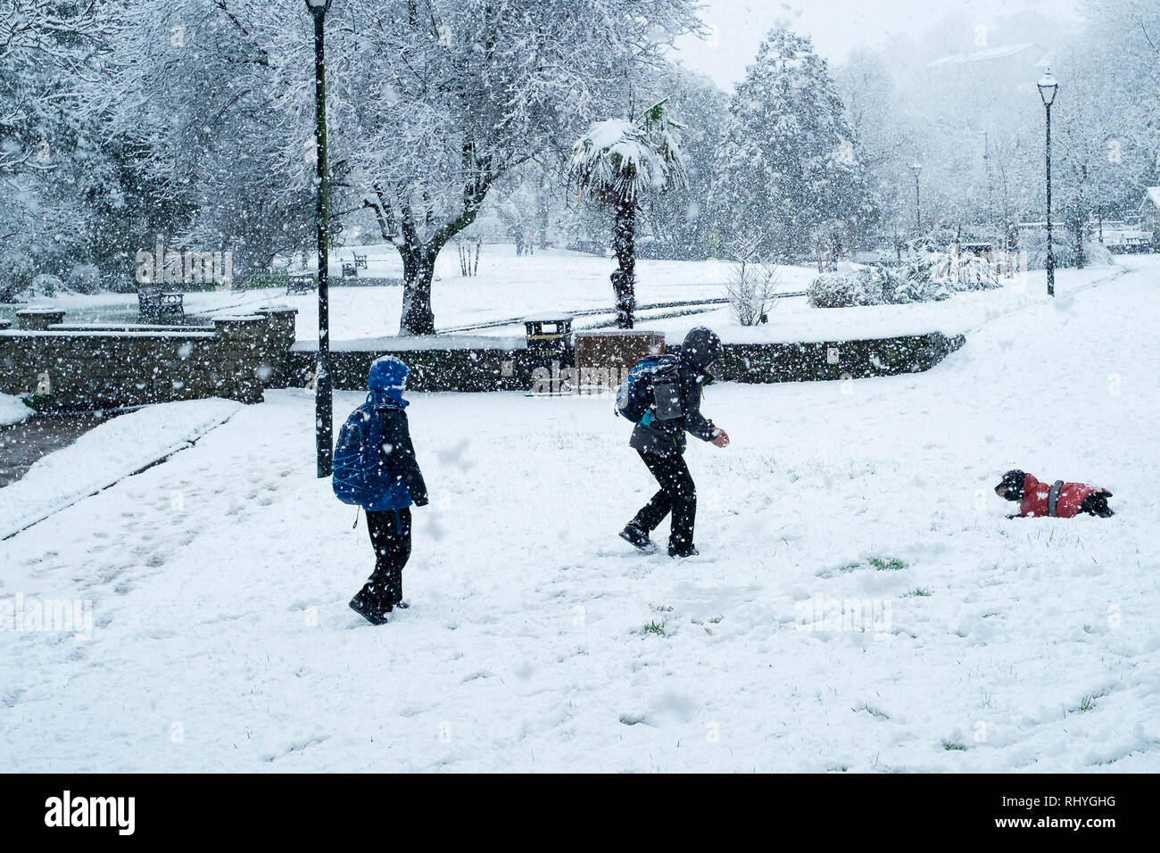 Two young boys playing with a dog in heavy snowfall in Trenance Park in Newquay in Cornwall. - Stock Image