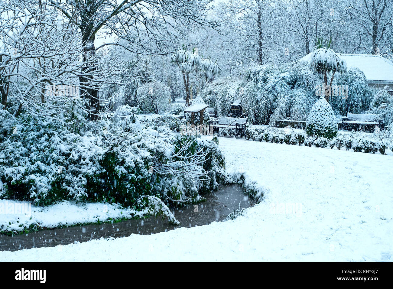 Trenance Gardens in heavy snowfall in Newquay in Cornwall. - Stock Image