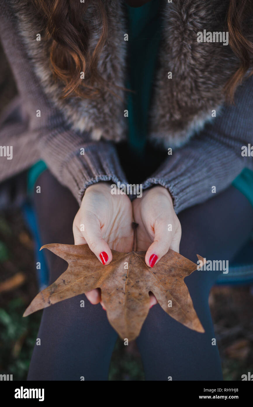 Absolutely beautiful lady woman with brunette hair deep blue eyes pink cheeks and rose pout lips sitting in autumn forest on foliage ground posing for - Stock Image