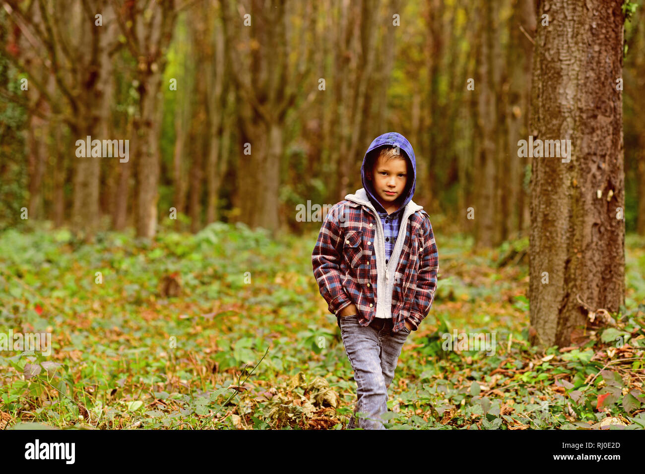 Small hipster. Small boy travel in autumn woods. Small boy look more hipster than homeless. Because Im a hipster - Stock Image