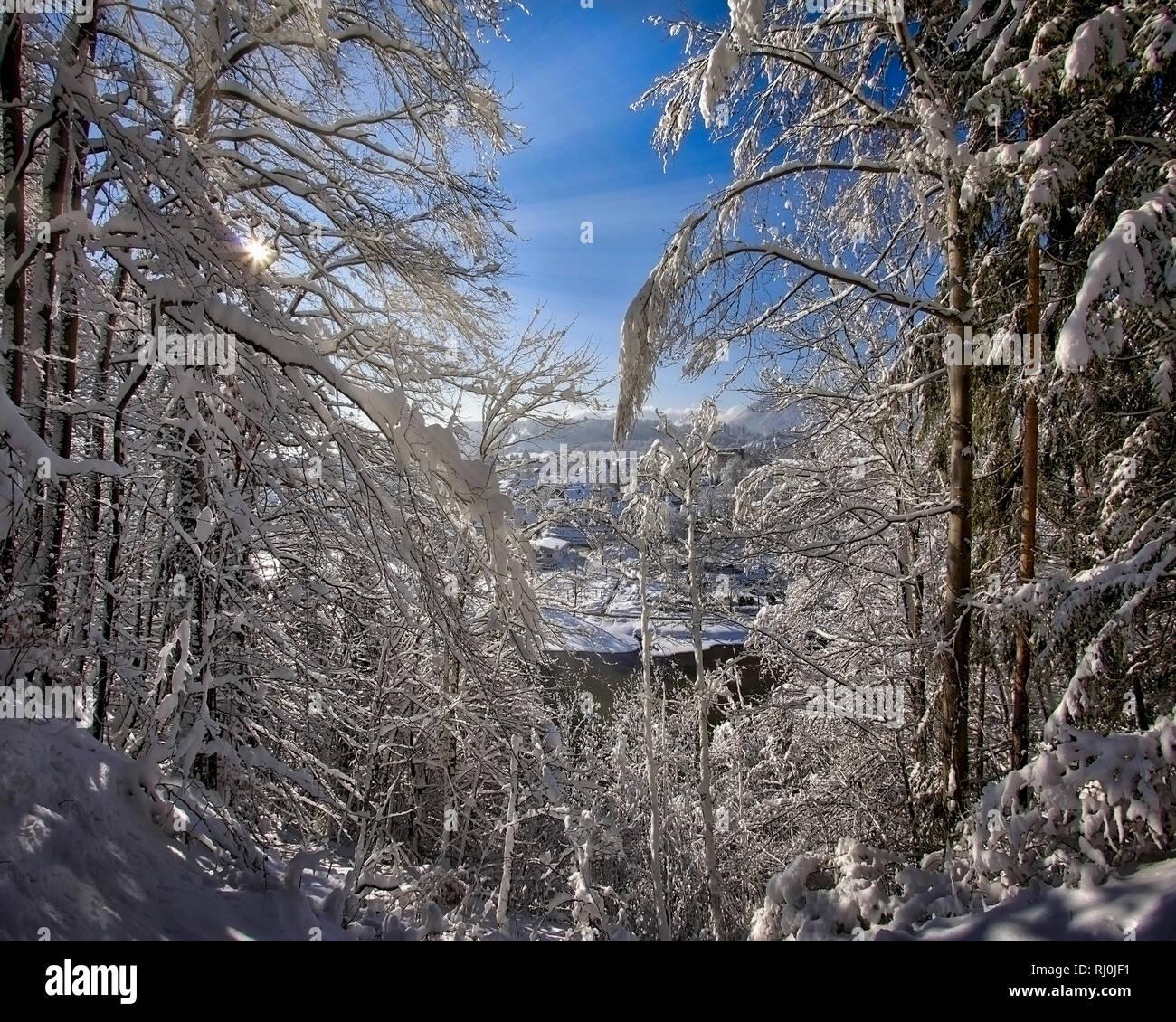 DE - BAVARIA: Wintry woodlands along river Isar at Bad Toelz  (HDR-Image) Stock Photo